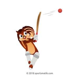 Gillu practicing Cricket