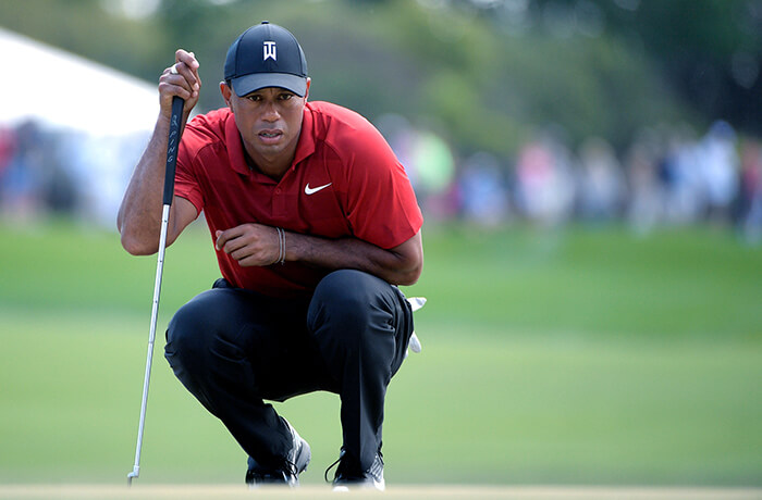 Tiger Woods on the Golf Field rare image