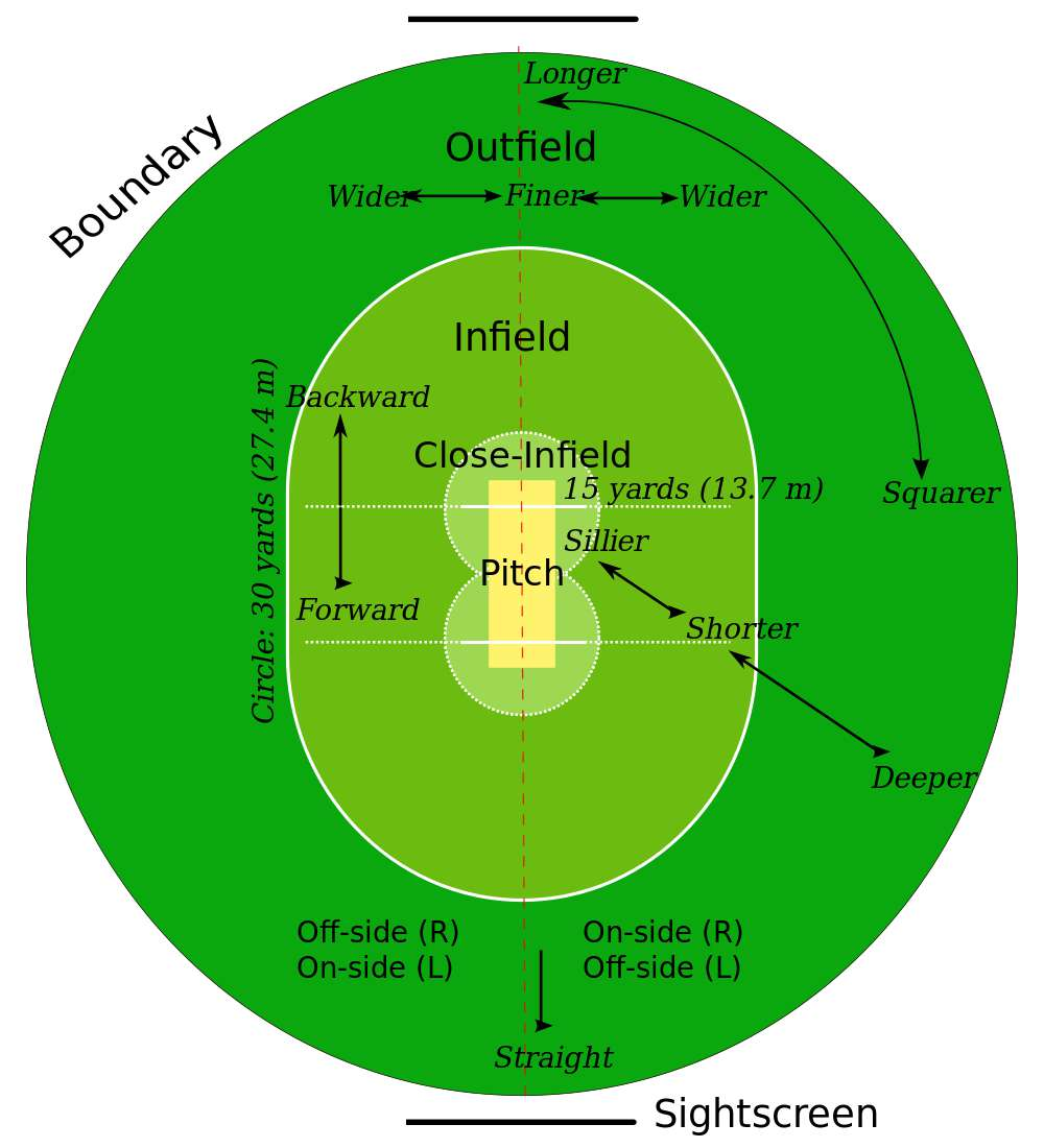 cricket pitch dimensions
