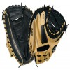 baseball Catcher's Glove