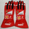Indycar Gloves