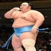 sumo wrestling mawashi