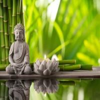 The magic of meditation