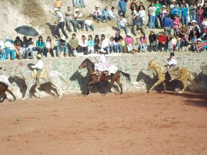 caballos de charreria