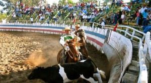 Chilean Rodeo arena