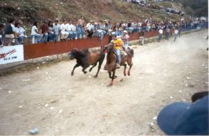 Venezuelan Coleo