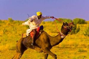 camel race in Sam Sand Dunes Desert Safari