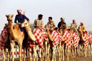 Dubai Camel Racing Festival
