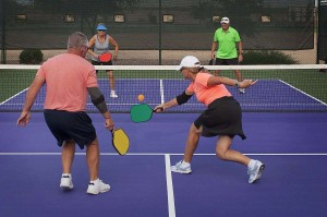 pickleball net and paddles