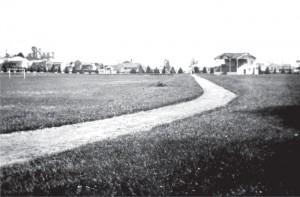 Seddon Park in 1920