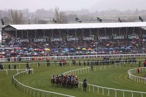 racecourse in united kingdom