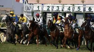 Mahalaxmi Racecourse Events