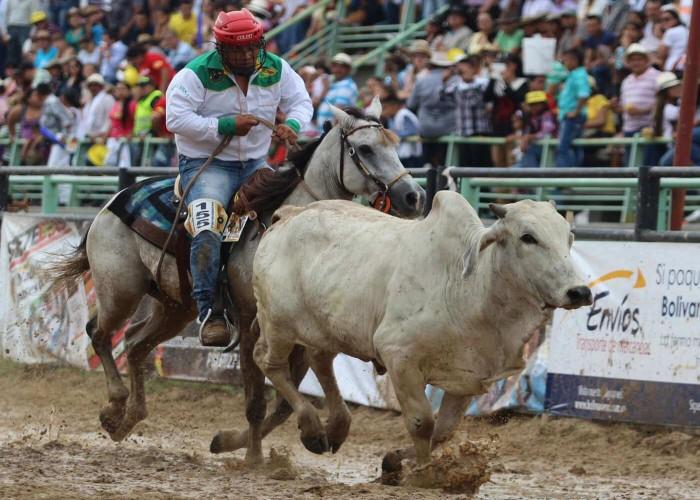 caballos de coleo famosos