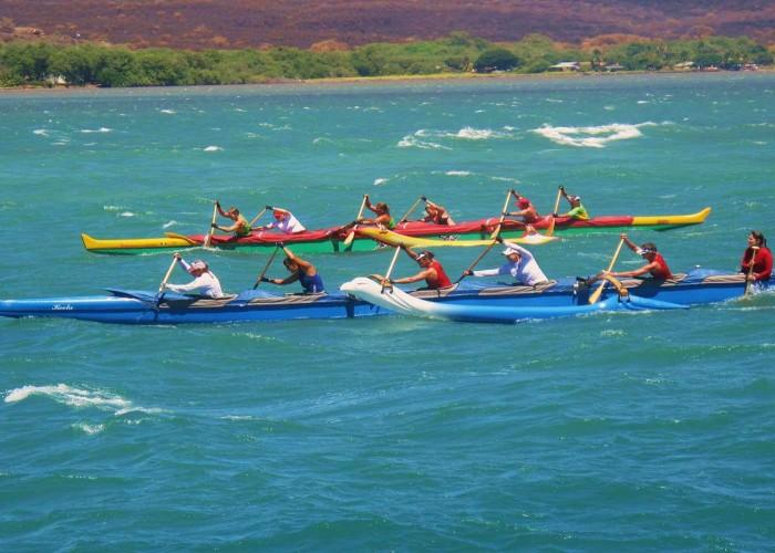 Ocean Racing sport