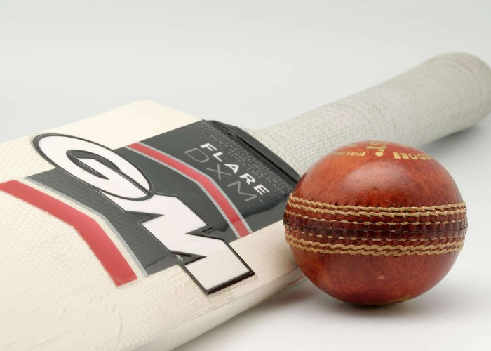 cricket bat and ball images