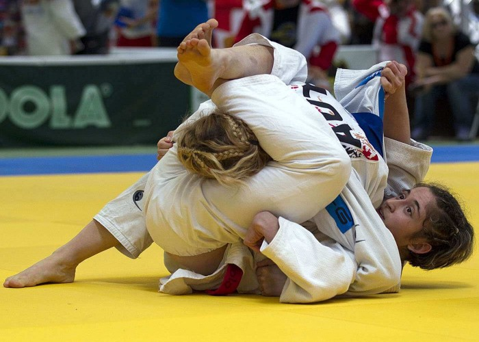 jujitsu combat